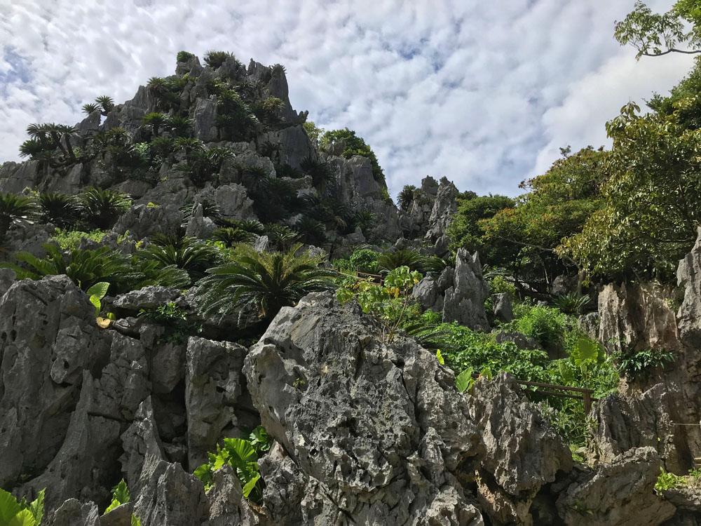 大石林山(国頭村)の岩山